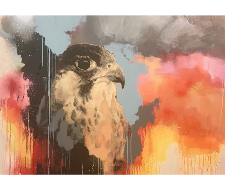 'Peregrine Study' by Jim Starr, represented by The Paragon Gallery.