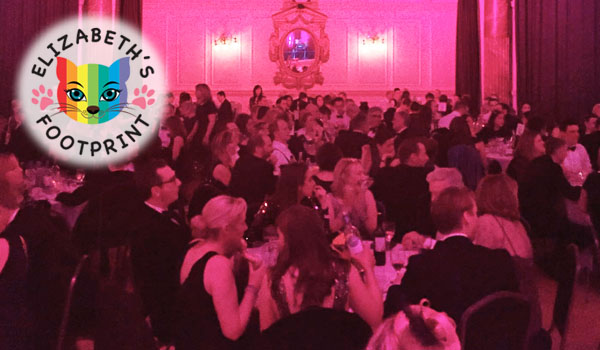 RRA gifted time and resources for the organisation of the Elizabeth Footprint Charity Ball